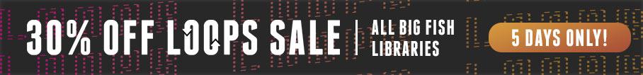 Big Fish Audio 30% Loops Sale